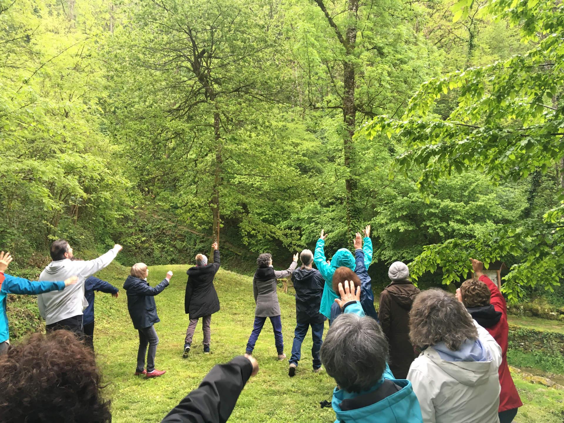 Au cœur des bois – Chant et Méditation